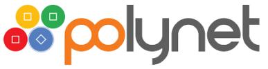 Polynet Logo Big